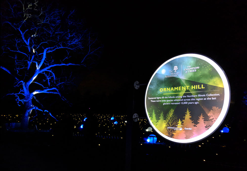 Touring enchanted forests: Illumination at The Morton Arboretum